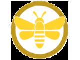 Препараты на пчелином подморе